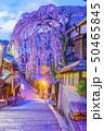 風景 通り 観光の写真 50465845