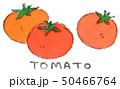 トマト 野菜 夏野菜のイラスト 50466764