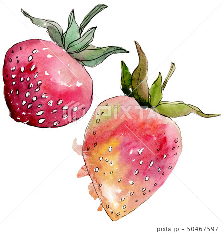 Strawberry healthy food in a watercolor style isolated. Watercolour background set. Isolated berry 50467597