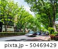 東京 表参道 50469429
