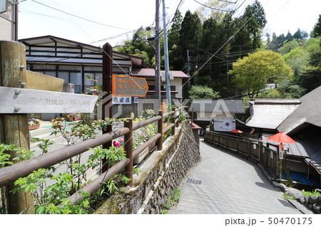 東京都の奥多摩の御岳山の登山 50470175