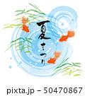 ベクター 夏祭り 和のイラスト 50470867