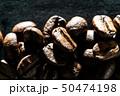 コーヒー豆の接写 50474198