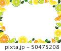 レモン 柑橘類 果物のイラスト 50475208