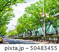 東京 表参道 50483455