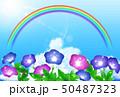 夏 花 虹のイラスト 50487323