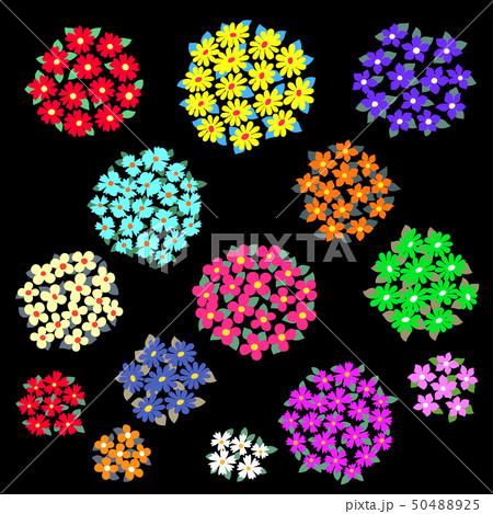 抽象的な花, 50488925