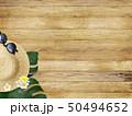 背景-海-夏-ビーチ-ウッドデッキ-モンステラ-プルメリア-麦わら帽子-サングラス 50494652