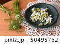皿に入れたカモミールの花、室内 50495762