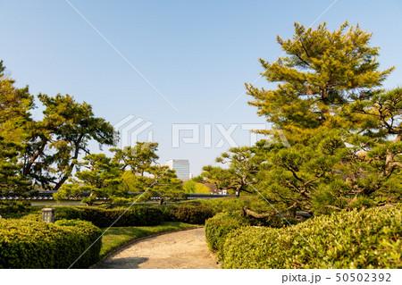 都会のオアシス 春の大濠公園【福岡県】 50502392