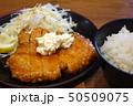 肉 ご飯 料理の写真 50509075