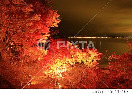 山中湖・旭日丘湖畔緑地公園 夕焼けの渚・紅葉まつりライトアップ 50515163