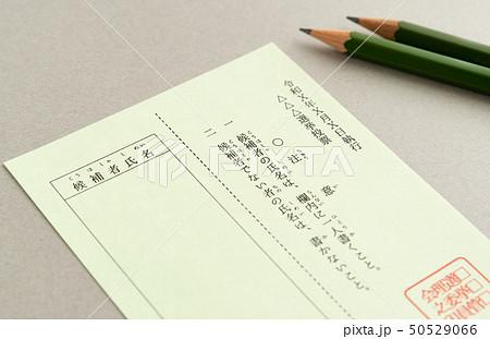選挙 投票 投票用紙 50529066