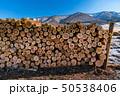 林業 積雪 貯木場の写真 50538406