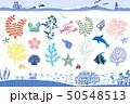 海 50548513