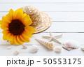 夏イメージ ひまわり 50553175