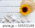 夏イメージ 50553199