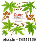 castor elements set 50553369