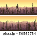 Horizontal banners of desert with cacti. 50562734