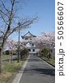 涌谷城 城 桜 満開 城山公園 50566607