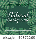 Exotic Tropical Green Leaves Frame Border Banner  50572265