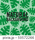 Exotic Tropical Green Leaves Banner Background 50572266
