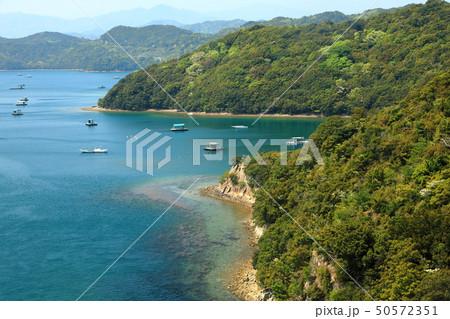 日本の風景 瀬戸内海国立公園 徳島県 鳴門 堀越海峡 50572351