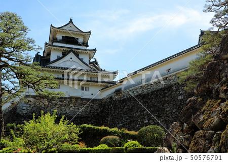 高知城 重要文化財 史跡 日本100名城 天守閣 石垣 高知県 50576791