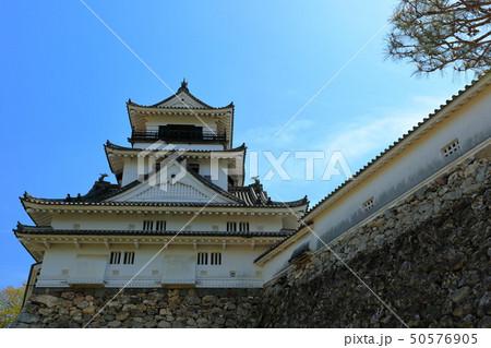 高知城 重要文化財 史跡 日本100名城 天守閣 石垣 高知県 50576905