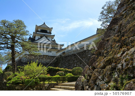 高知城 重要文化財 史跡 日本100名城 天守閣 石垣 高知県 50576907