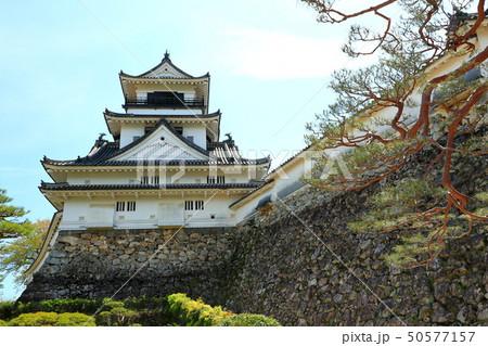 高知城 重要文化財 史跡 日本100名城 天守閣 石垣 高知県 50577157