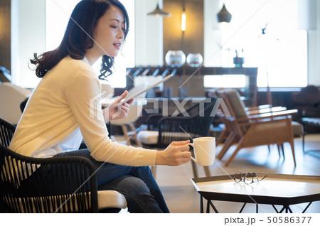 カフェ 女性 50586377