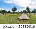 【キャンプ】ワンポールテント アウトドアイメージ 50589610