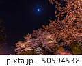 舞鶴公園の夜桜 50594538