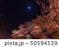 舞鶴公園の夜桜 50594539