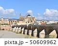 コルドバの橋 50609962