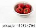 トマト とまと 果実の写真 50614794