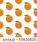 アプリコット アンズ 杏のイラスト 50620828
