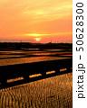 田んぼ 田畑 畑の写真 50628300