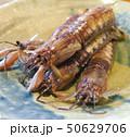 マジャクの揚げ物(有明海) 50629706
