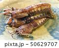 マジャクの揚げ物(有明海) 50629707