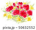 carnation19512pix7 50632552