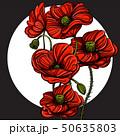 赤 赤色 ポピーのイラスト 50635803