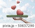 Female hand holding red hearts on green grass model on blue sky background 50637290