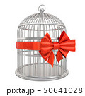 Bird cage with red bow and ribbon, 3D rendering 50641028