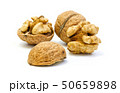 Walnuts, whole and opened on white background 50659898