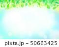 緑の葉 水玉,バブル,光のバックグラウンド 50663425