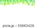 緑の葉 水玉,バブル,光のバックグラウンド 50663426