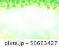 緑の葉 水玉,バブル,光のバックグラウンド 50663427