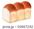 パン イギリスパン 食パンのイラスト 50667292